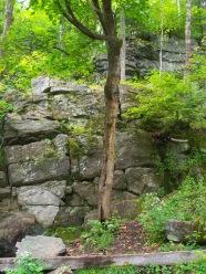 Paroi escalade naturelle démontée en automne
